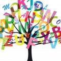 Ngữ pháp Tiếng Anh, cách học hiệu quả?