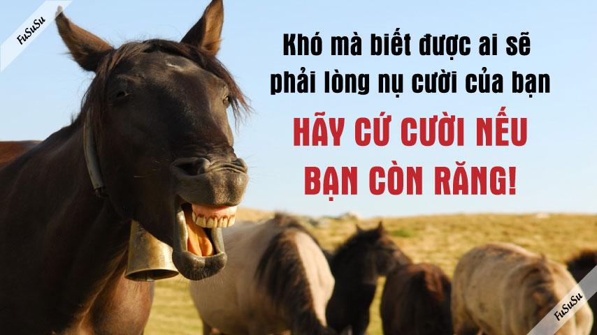 cách nói chuyện hài hước thông minh khiến ngựa cũng cười