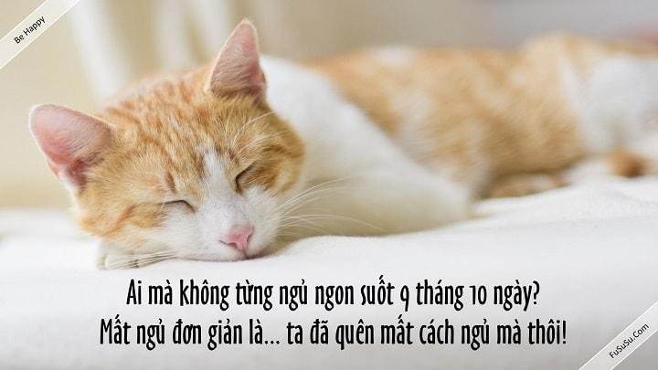 bị mất ngủ ư? ai cũng có thể ngủ mà!!!